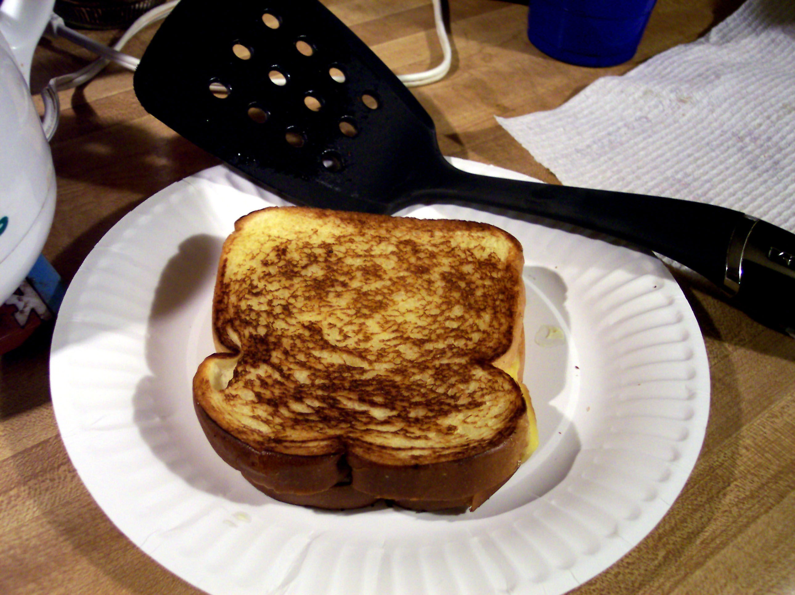 A grilled cheese sitting on a plate.